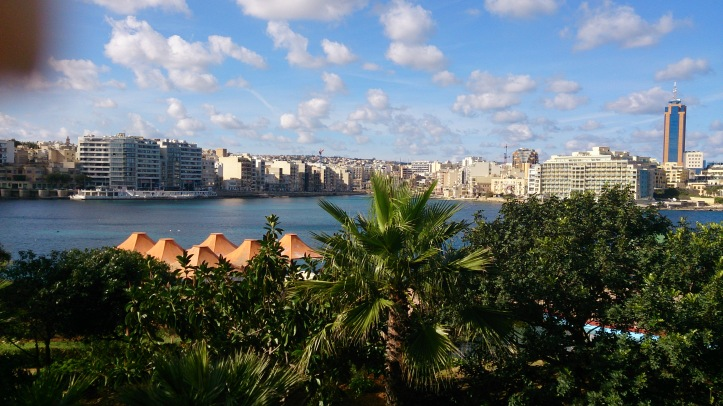 Hästliv Malta 383