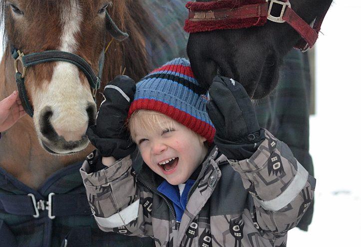 häst10