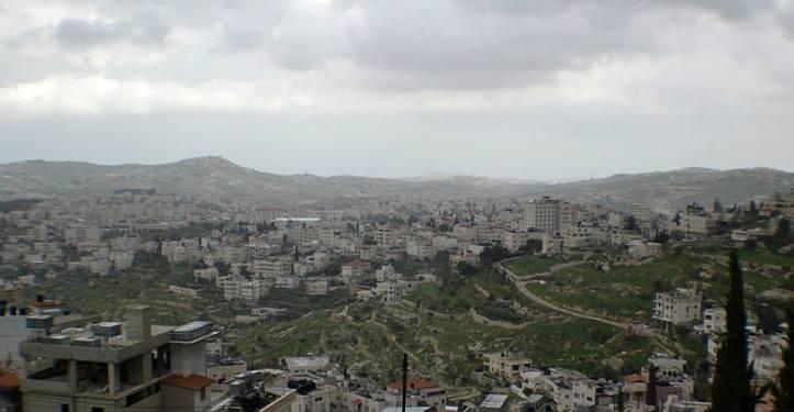palestina16