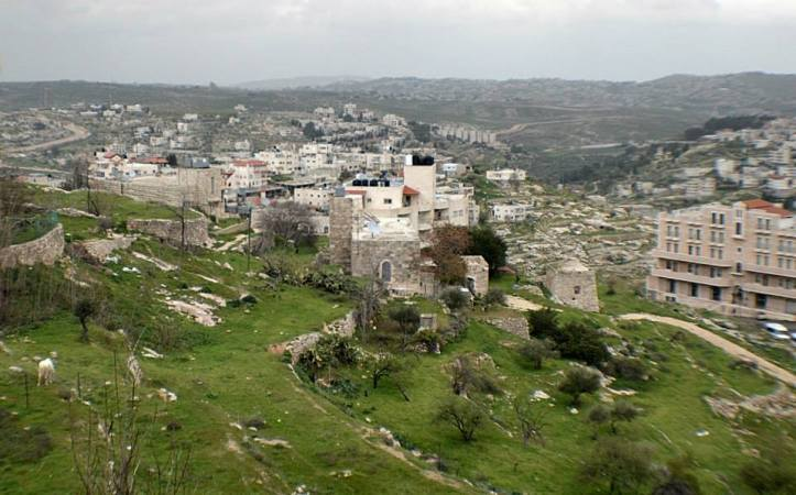 palestina18