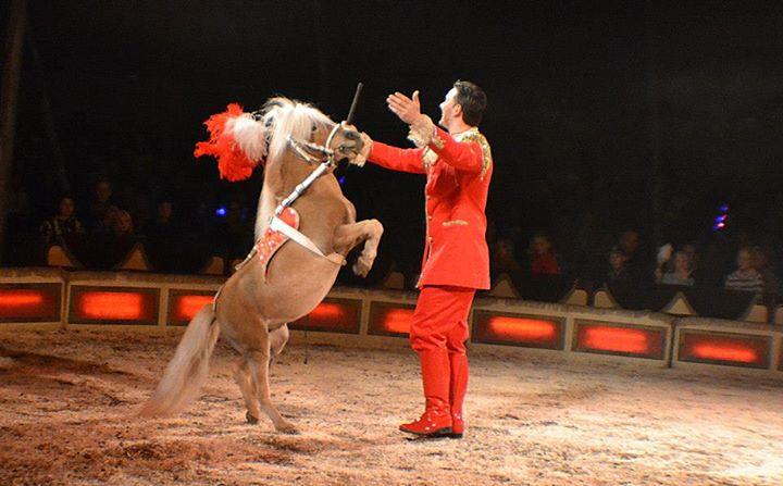 cirkus12