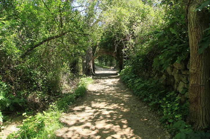 Malta_-_Siggiewi_-_Triq_il-Buskett_-_Buskett_Gardens_61_ies